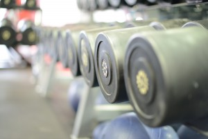 Heavy dumbbells on a rack at Coco's Gym